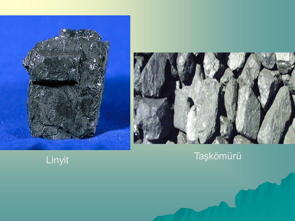 B)ORGANİK TORTUL TAŞLAR CCCCanlı kalıntılarının çökelerek birikmesi ve zamanla taşlaşması sonucu oluşurlar. MMMMercan kalkeri, turba(yertezeği