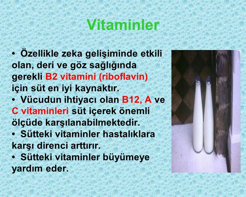 Vitaminler Özellikle zeka gelişiminde etkili olan, deri ve göz sağlığında gerekli B2 vitamini (riboflavin) için süt en iyi kaynaktır. Vücudun ihtiyacı