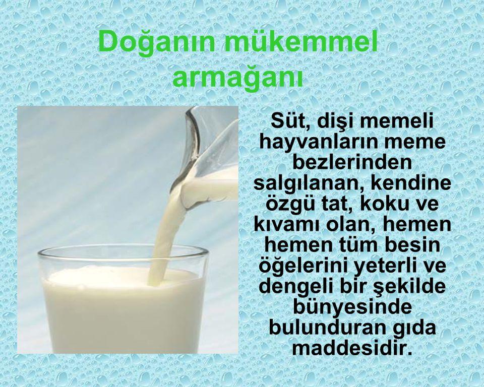 Doğanın mükemmel armağanı Süt, dişi memeli hayvanların meme bezlerinden salgılanan, kendine özgü tat, koku ve kıvamı olan, hemen hemen tüm besin öğelerini yeterli ve dengeli bir şekilde bünyesinde bulunduran gıda maddesidir.