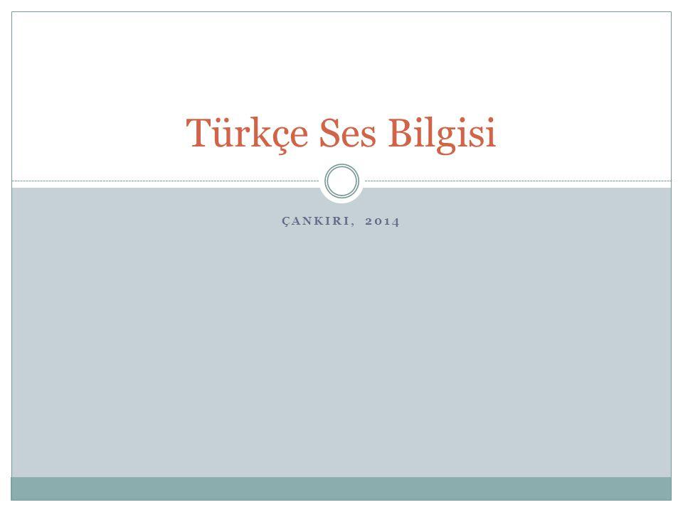 ÇANKIRI, 2014 Türkçe Ses Bilgisi