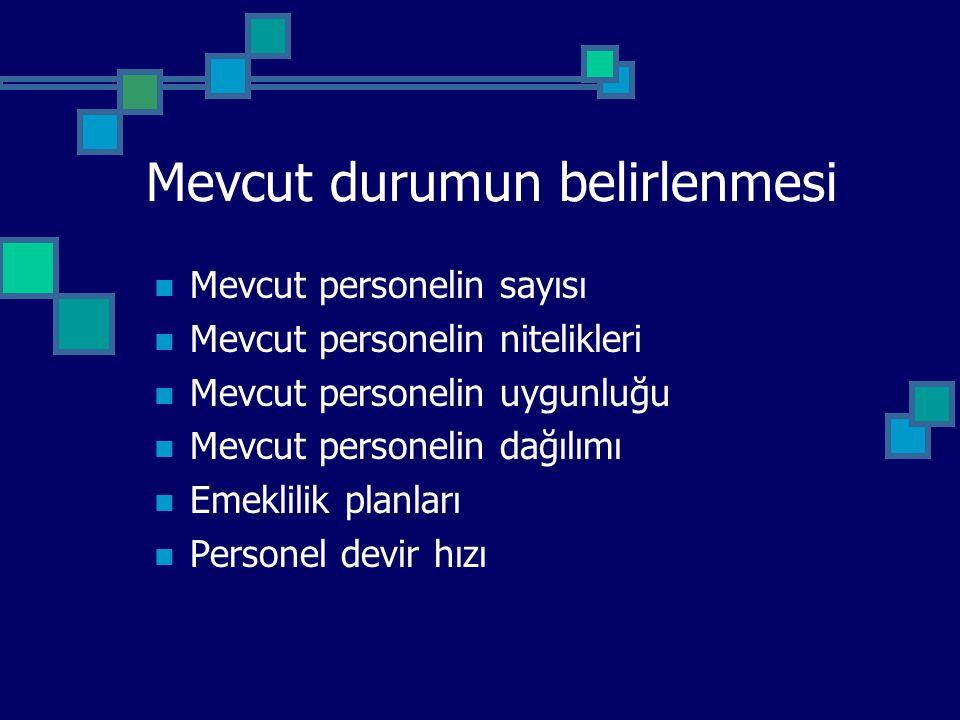 Mevcut durumun belirlenmesi Mevcut personelin sayısı Mevcut personelin nitelikleri Mevcut personelin uygunluğu Mevcut personelin dağılımı Emeklilik pl