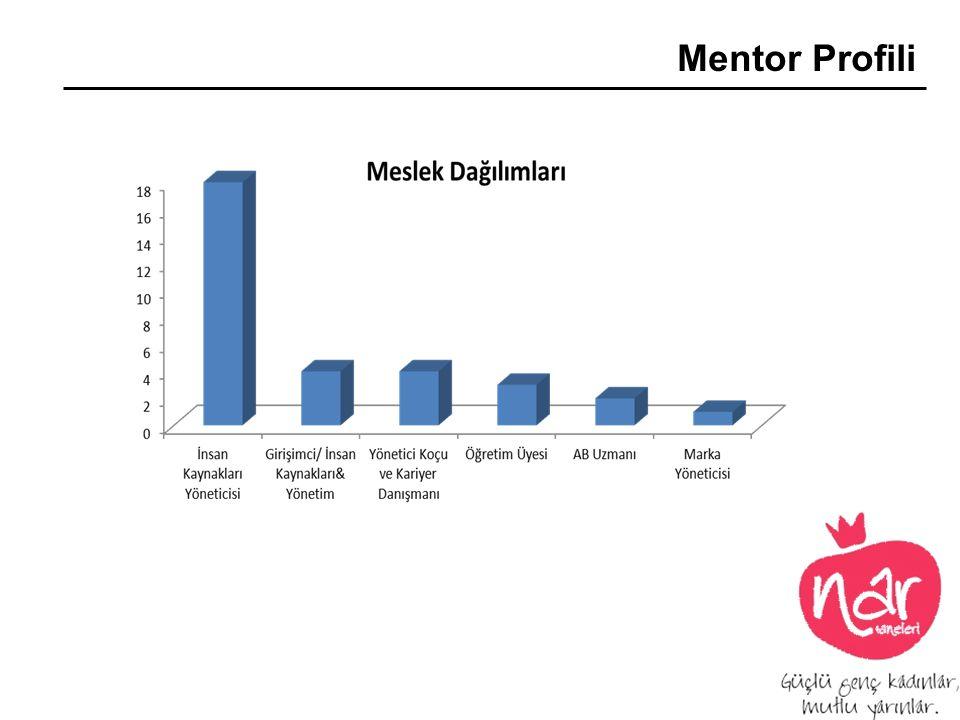 Mentor Profili