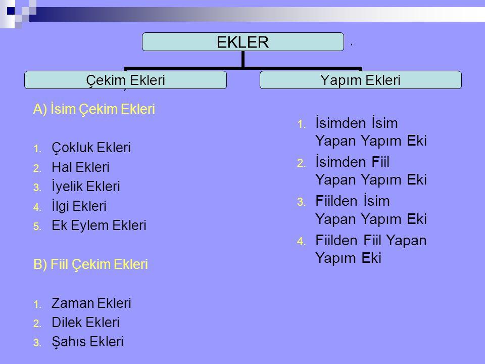 A) İsim Çekim Ekleri 1. Çokluk Ekleri 2. Hal Ekleri 3. İyelik Ekleri 4. İlgi Ekleri 5. Ek Eylem Ekleri B) Fiil Çekim Ekleri 1. Zaman Ekleri 2. Dilek E