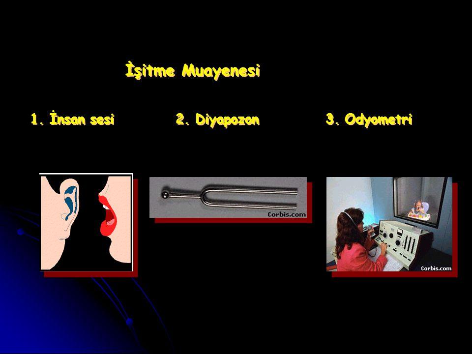 İşitme Muayenesi 1.İnsan sesi 2. Diyapozon 3. Odyometri İşitme Muayenesi 1.