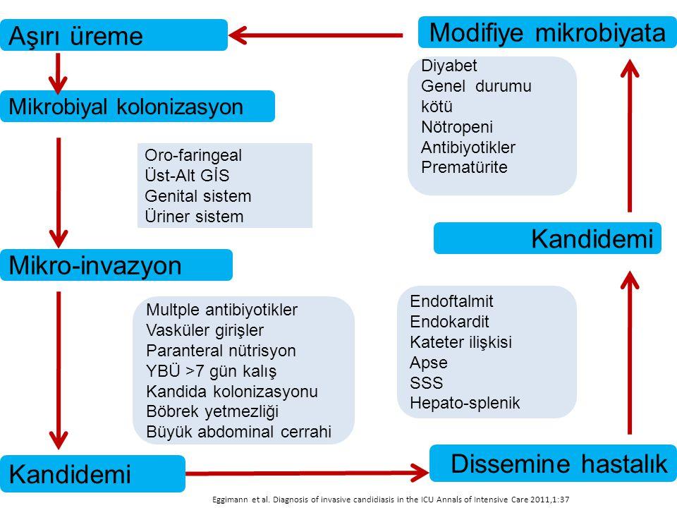Aşırı üreme Modifiye mikrobiyata Mikrobiyal kolonizasyon Mikro-invazyon Kandidemi Dissemine hastalık Kandidemi Oro-faringeal Üst-Alt GİS Genital siste