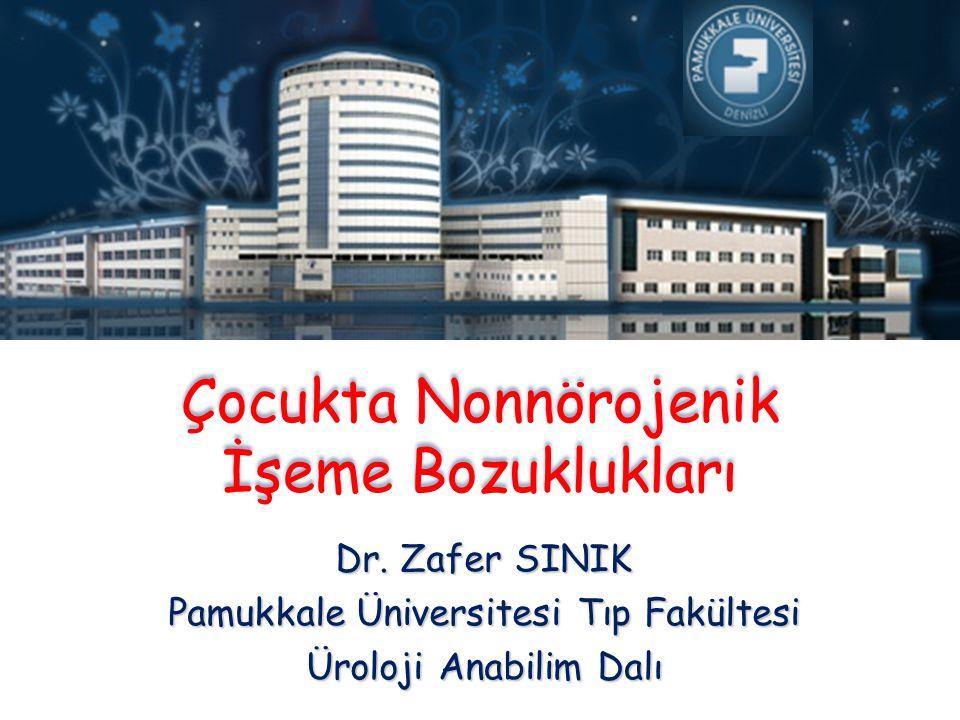 Çocukta Nonnörojenik İşeme Bozuklukları Dr. Zafer SINIK Pamukkale Üniversitesi Tıp Fakültesi Üroloji Anabilim Dalı