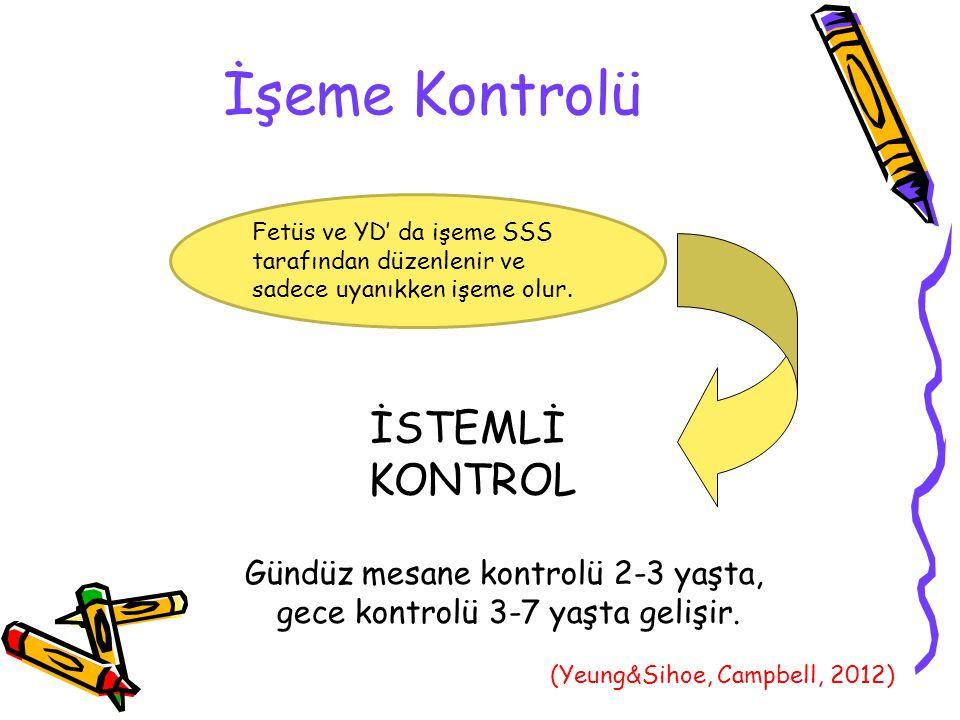 İşeme Kontrolü REFLEKS İSTEMLİ KONTROL Gündüz mesane kontrolü 2-3 yaşta, gece kontrolü 3-7 yaşta gelişir.