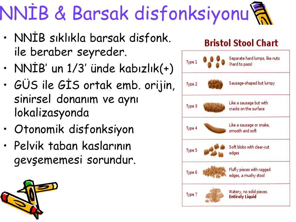 NNİB & Barsak disfonksiyonu NNİB sıklıkla barsak disfonk. ile beraber seyreder. NNİB' un 1/3' ünde kabızlık(+) GÜS ile GİS ortak emb. orijin, sinirsel