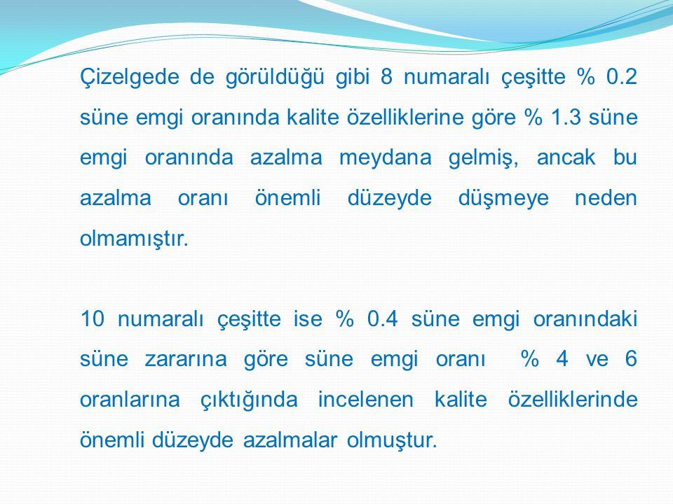 Çizelgede de görüldüğü gibi 8 numaralı çeşitte % 0.2 süne emgi oranında kalite özelliklerine göre % 1.3 süne emgi oranında azalma meydana gelmiş, ancak bu azalma oranı önemli düzeyde düşmeye neden olmamıştır.