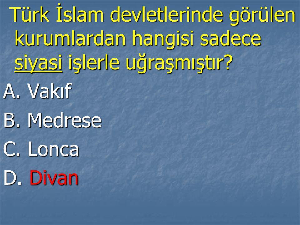 Türk İslam devletlerinde görülen kurumlardan hangisi sadece siyasi işlerle uğraşmıştır.