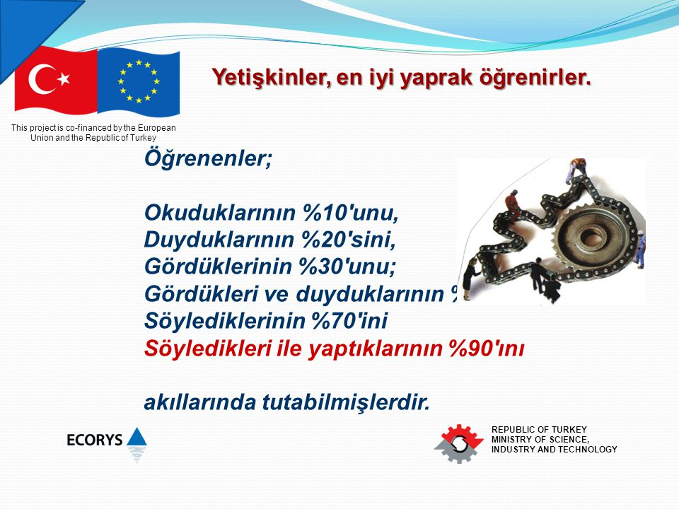 This project is co-financed by the European Union and the Republic of Turkey REPUBLIC OF TURKEY MINISTRY OF SCIENCE, INDUSTRY AND TECHNOLOGY Yetişkinl