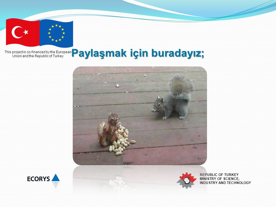 This project is co-financed by the European Union and the Republic of Turkey REPUBLIC OF TURKEY MINISTRY OF SCIENCE, INDUSTRY AND TECHNOLOGY YATAY DÜZEN