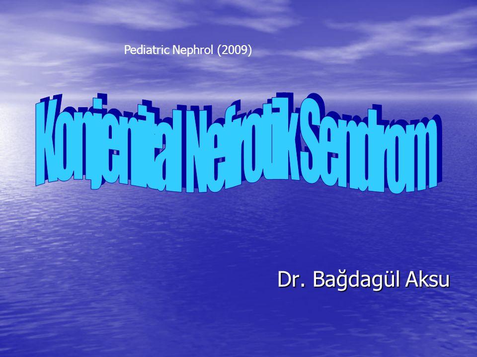 Dr. Bağdagül Aksu Dr. Bağdagül Aksu Pediatric Nephrol (2009)