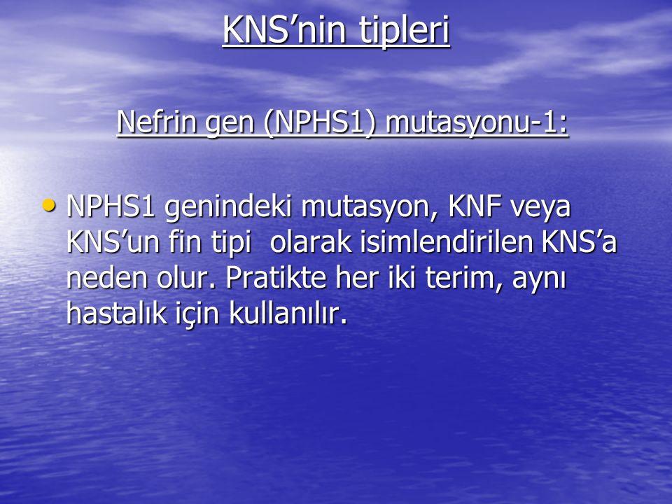 KNS'nin tipleri Nefrin gen (NPHS1) mutasyonu-1: NPHS1 genindeki mutasyon, KNF veya KNS'un fin tipi olarak isimlendirilen KNS'a neden olur.