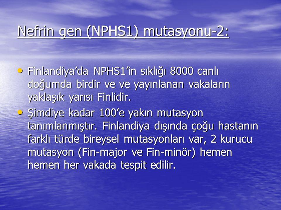 Nefrin gen (NPHS1) mutasyonu-2: Finlandiya'da NPHS1'in sıklığı 8000 canlı doğumda birdir ve ve yayınlanan vakaların yaklaşık yarısı Finlidir.