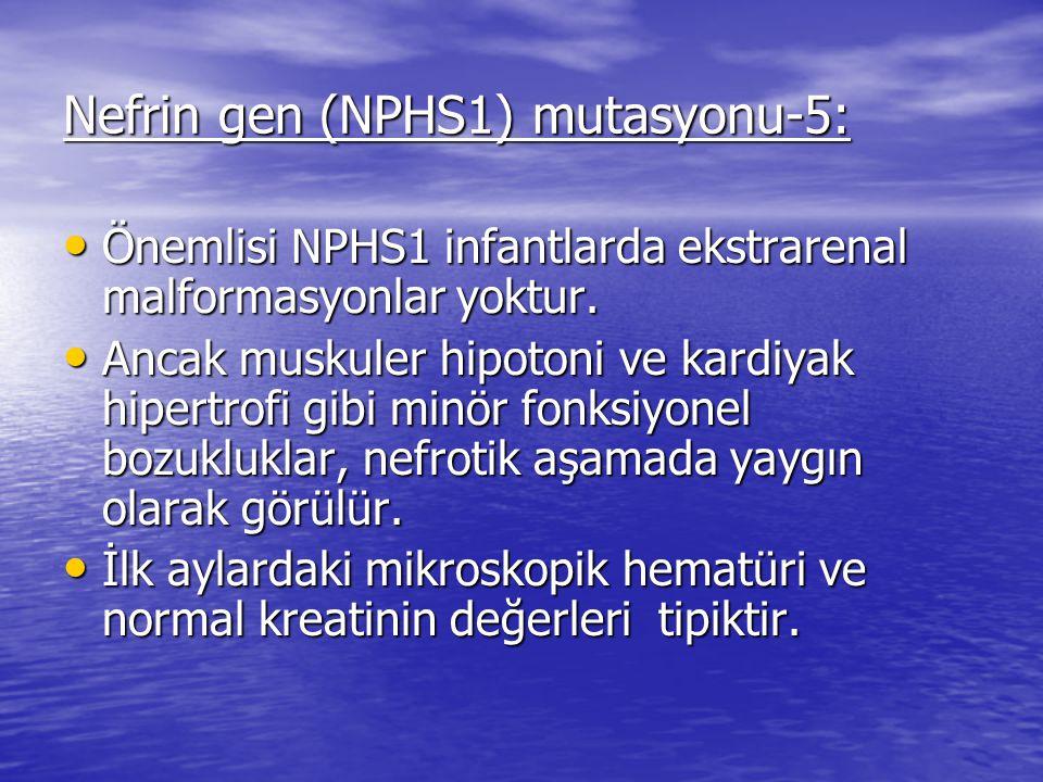 Nefrin gen (NPHS1) mutasyonu-5: Önemlisi NPHS1 infantlarda ekstrarenal malformasyonlar yoktur.