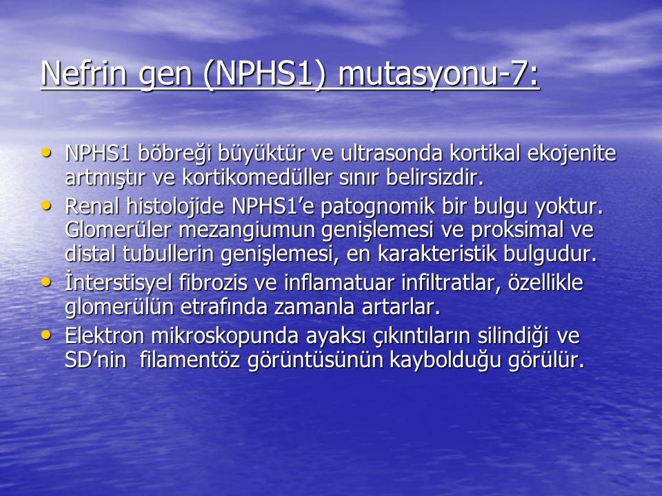 Nefrin gen (NPHS1) mutasyonu-7: NPHS1 böbreği büyüktür ve ultrasonda kortikal ekojenite artmıştır ve kortikomedüller sınır belirsizdir.