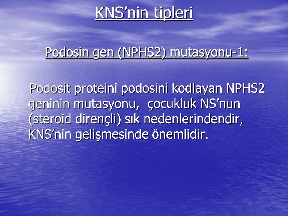 KNS'nin tipleri Podosin gen (NPHS2) mutasyonu-1: Podosit proteini podosini kodlayan NPHS2 geninin mutasyonu, çocukluk NS'nun (steroid dirençli) sık nedenlerindendir, KNS'nin gelişmesinde önemlidir.