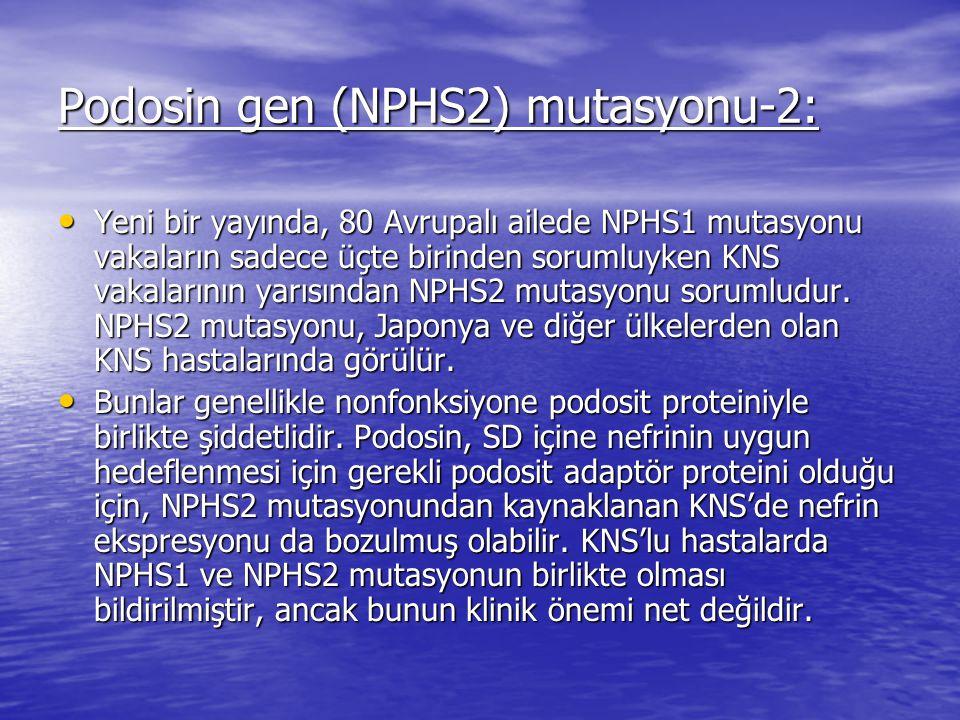Podosin gen (NPHS2) mutasyonu-2: Yeni bir yayında, 80 Avrupalı ailede NPHS1 mutasyonu vakaların sadece üçte birinden sorumluyken KNS vakalarının yarısından NPHS2 mutasyonu sorumludur.