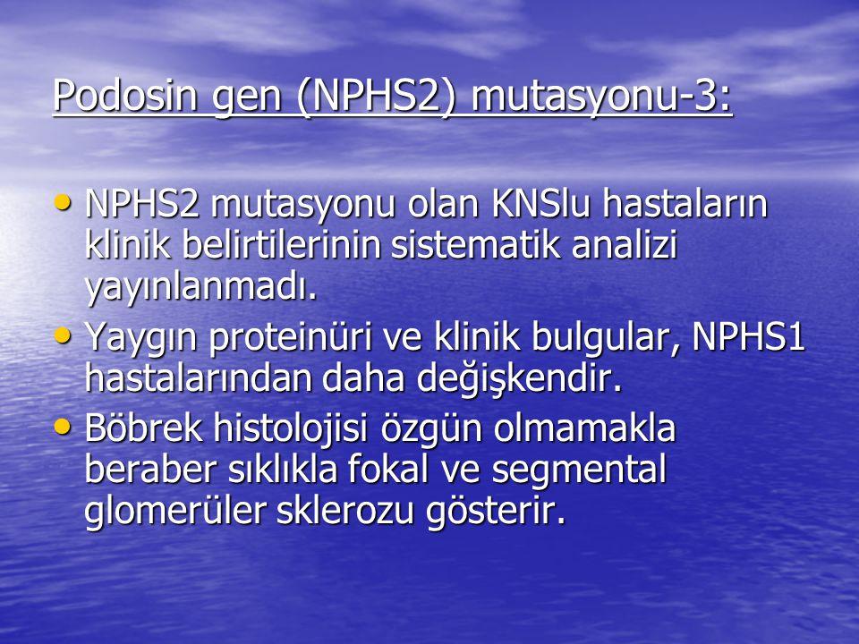 Podosin gen (NPHS2) mutasyonu-3: NPHS2 mutasyonu olan KNSlu hastaların klinik belirtilerinin sistematik analizi yayınlanmadı.