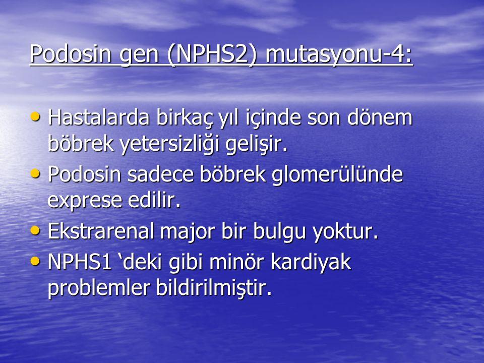 Podosin gen (NPHS2) mutasyonu-4: Hastalarda birkaç yıl içinde son dönem böbrek yetersizliği gelişir.
