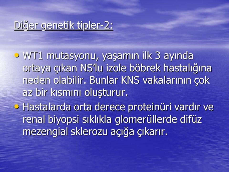 Diğer genetik tipler-2: WT1 mutasyonu, yaşamın ilk 3 ayında ortaya çıkan NS'lu izole böbrek hastalığına neden olabilir.