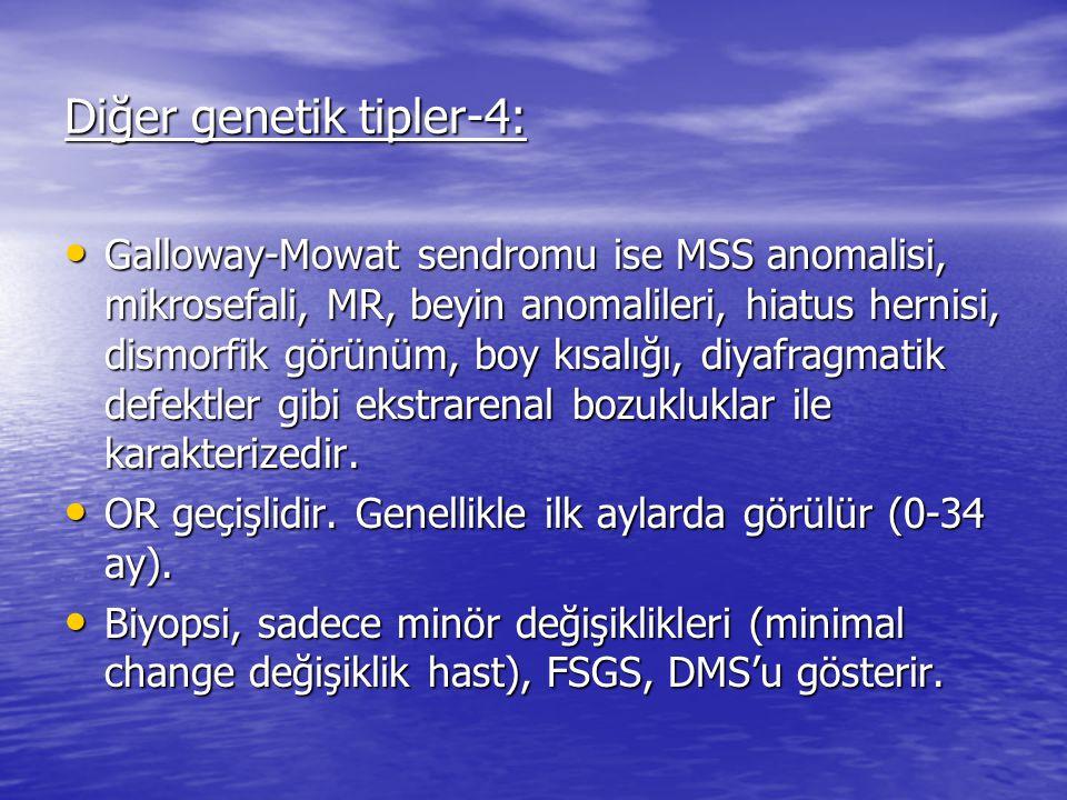 Diğer genetik tipler-4: Galloway-Mowat sendromu ise MSS anomalisi, mikrosefali, MR, beyin anomalileri, hiatus hernisi, dismorfik görünüm, boy kısalığı, diyafragmatik defektler gibi ekstrarenal bozukluklar ile karakterizedir.