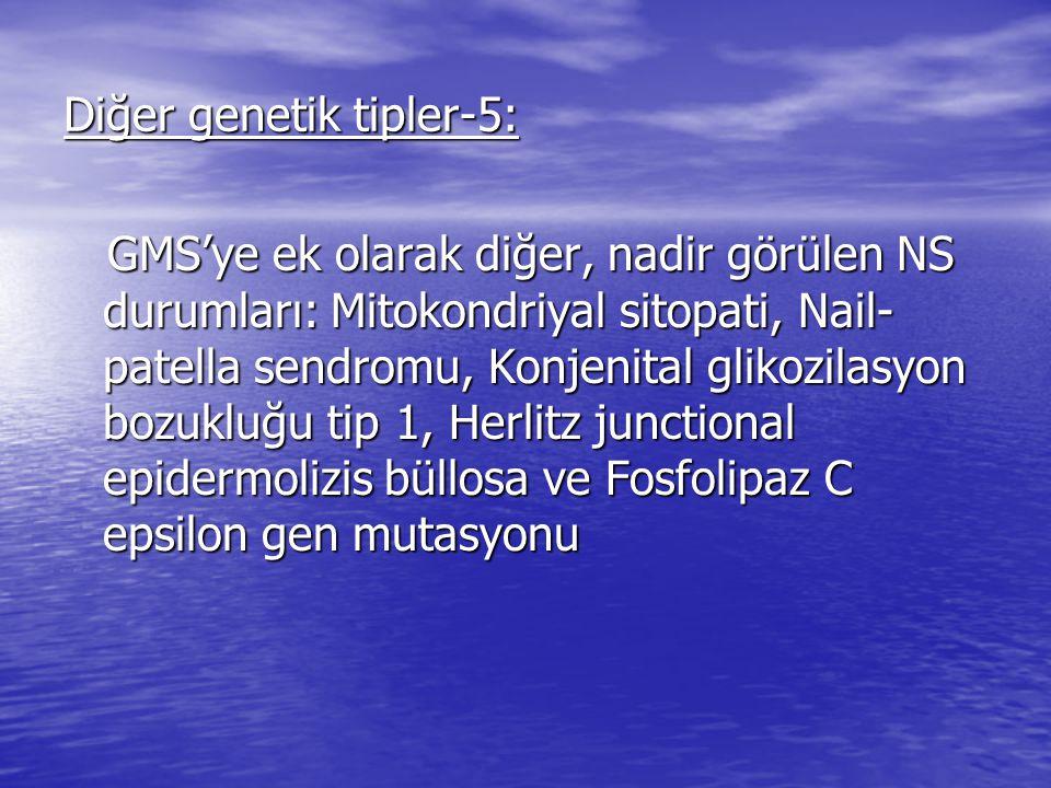 Diğer genetik tipler-5: GMS'ye ek olarak diğer, nadir görülen NS durumları: Mitokondriyal sitopati, Nail- patella sendromu, Konjenital glikozilasyon bozukluğu tip 1, Herlitz junctional epidermolizis büllosa ve Fosfolipaz C epsilon gen mutasyonu GMS'ye ek olarak diğer, nadir görülen NS durumları: Mitokondriyal sitopati, Nail- patella sendromu, Konjenital glikozilasyon bozukluğu tip 1, Herlitz junctional epidermolizis büllosa ve Fosfolipaz C epsilon gen mutasyonu