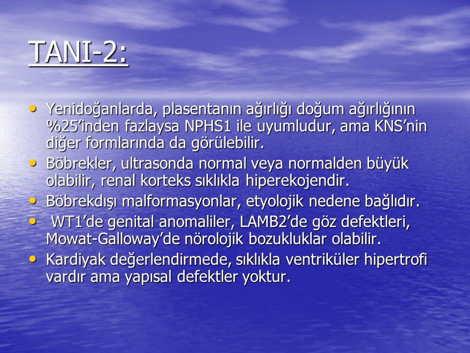 TANI-2: Yenidoğanlarda, plasentanın ağırlığı doğum ağırlığının %25'inden fazlaysa NPHS1 ile uyumludur, ama KNS'nin diğer formlarında da görülebilir.