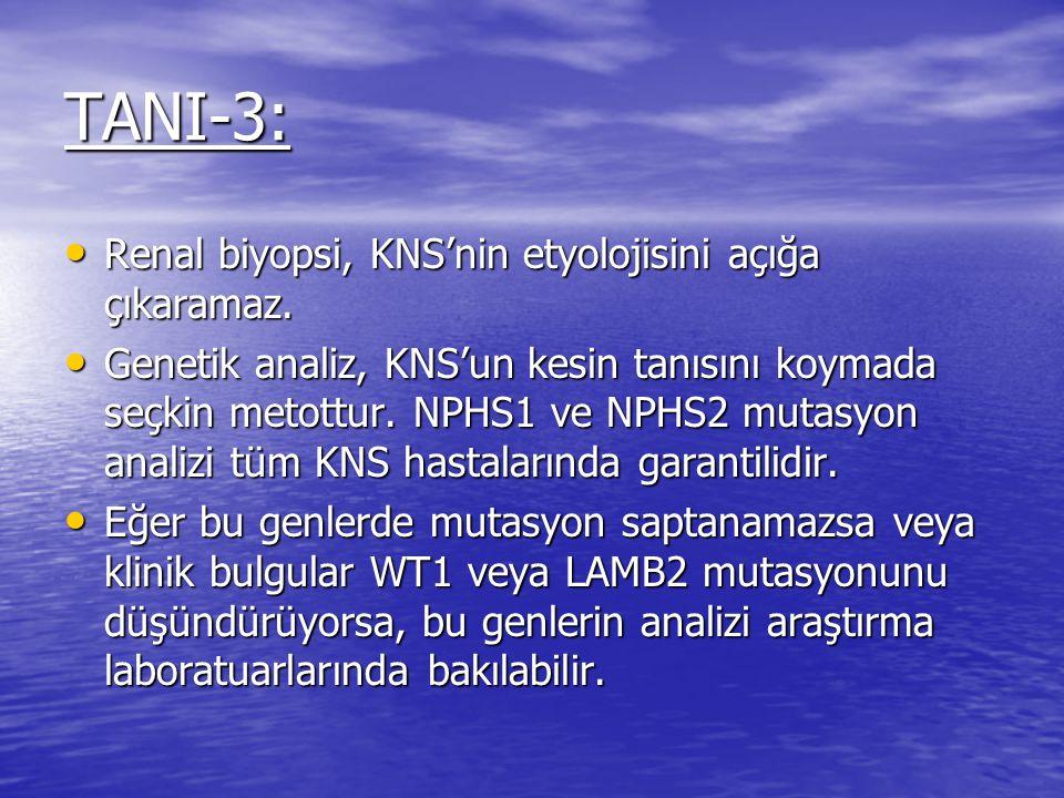 TANI-3: Renal biyopsi, KNS'nin etyolojisini açığa çıkaramaz.