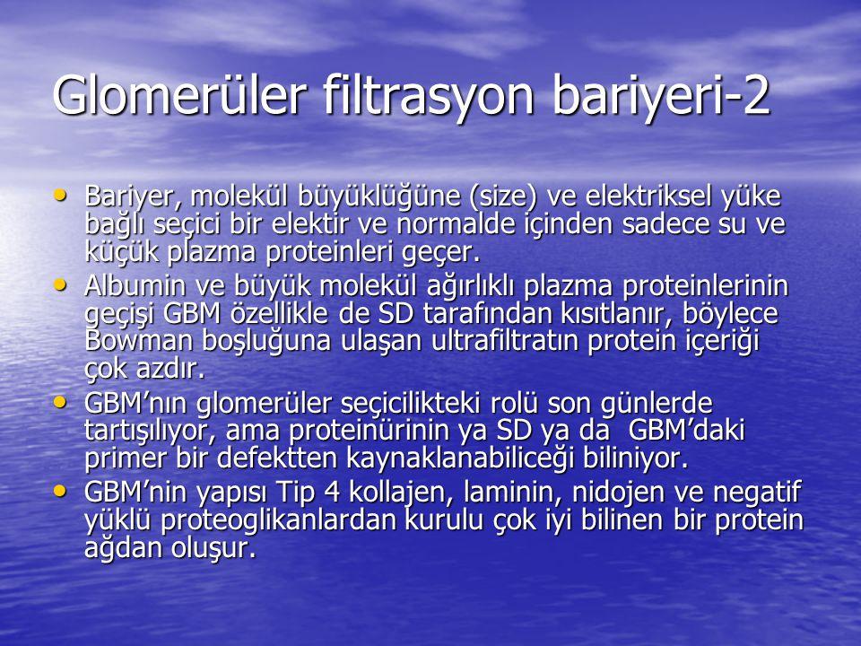 Glomerüler filtrasyon bariyeri-2 Bariyer, molekül büyüklüğüne (size) ve elektriksel yüke bağlı seçici bir elektir ve normalde içinden sadece su ve küçük plazma proteinleri geçer.