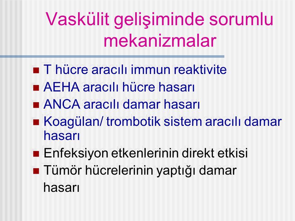 WEGENER GRANULAMOTOZU Dev hücreler