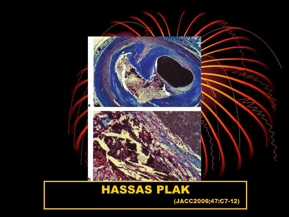 HASSAS PLAK (JACC2006;47:C7-12)