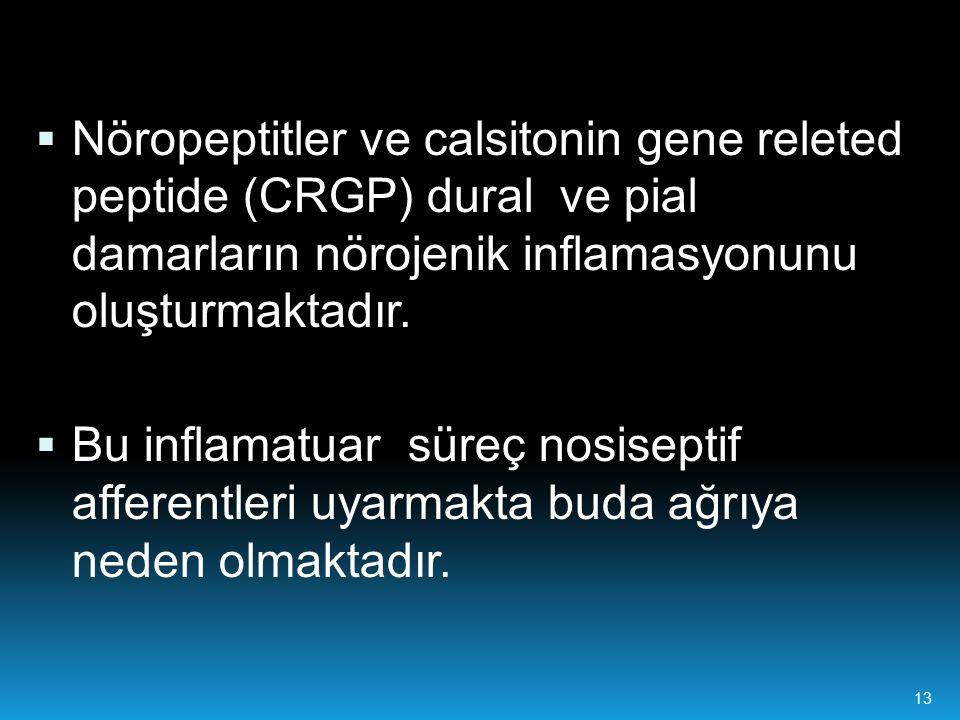 13  Nöropeptitler ve calsitonin gene releted peptide (CRGP) dural ve pial damarların nörojenik inflamasyonunu oluşturmaktadır.  Bu inflamatuar süreç