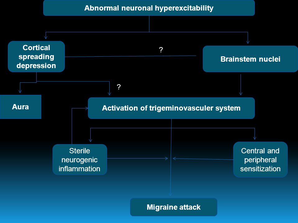 Abnormal neuronal hyperexcitability Cortical spreading depression Brainstem nuclei Aura Activation of trigeminovasculer system Migraine attack Sterile