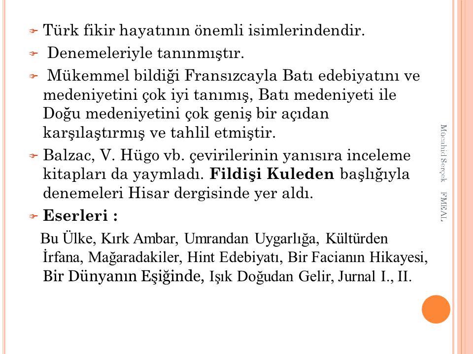  Türk fikir hayatının önemli isimlerindendir.  Denemeleriyle tanınmıştır.  Mükemmel bildiği Fransızcayla Batı edebiyatını ve medeniyetini çok iyi t