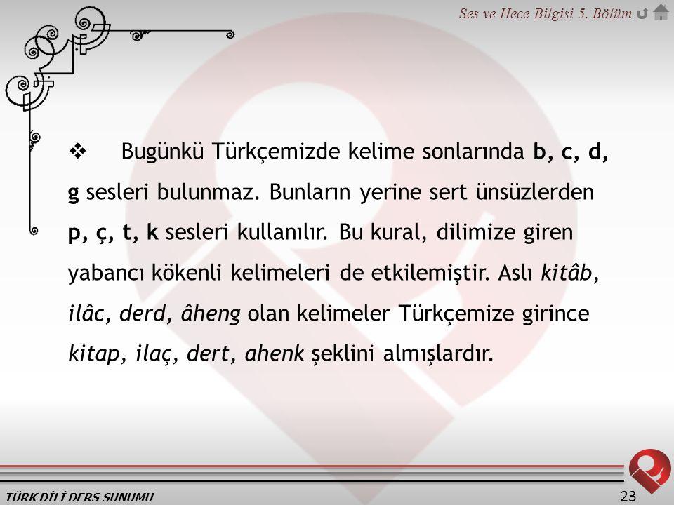 TÜRK DİLİ DERS SUNUMU Ses ve Hece Bilgisi 5. Bölüm 23  Bugünkü Türkçemizde kelime sonlarında b, c, d, g sesleri bulunmaz. Bunların yerine sert ünsüzl