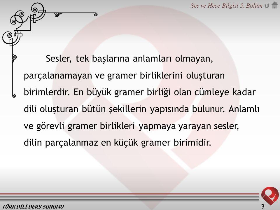 TÜRK DİLİ DERS SUNUMU Ses ve Hece Bilgisi 5.