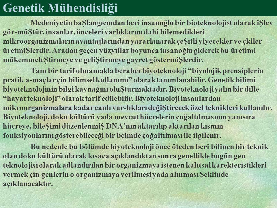 Genetik Mühendisliği Medeniyetin baŞlangıcından beri insanoğlu bir bioteknolojist olarak iŞlev gör-müŞtür.