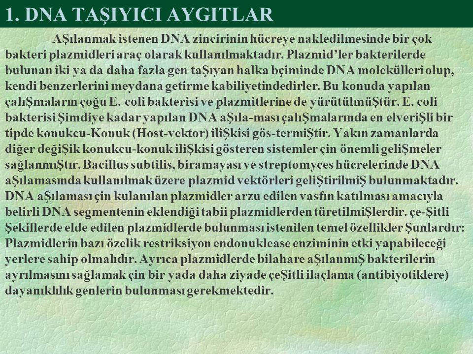 1. DNA TAŞIYICI AYGITLAR AŞılanmak istenen DNA zincirinin hücreye nakledilmesinde bir çok bakteri plazmidleri araç olarak kullanılmaktadır. Plazmid'le
