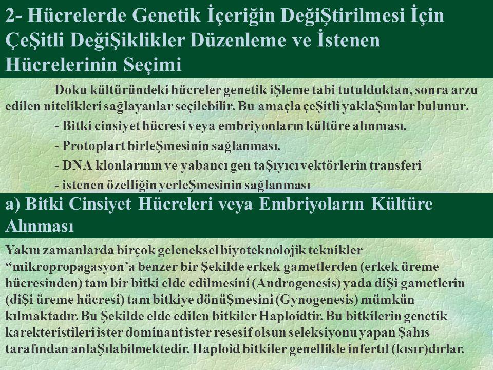 2- Hücrelerde Genetik İçeriğin DeğiŞtirilmesi İçin ÇeŞitli DeğiŞiklikler Düzenleme ve İstenen Hücrelerinin Seçimi Doku kültüründeki hücreler genetik iŞleme tabi tutulduktan, sonra arzu edilen nitelikleri sağlayanlar seçilebilir.