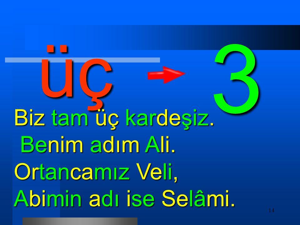 14 üç Biz tam üç kardeşiz. Benim adım Ali. Ortancamız Veli, Abimin adı ise Selâmi. 3