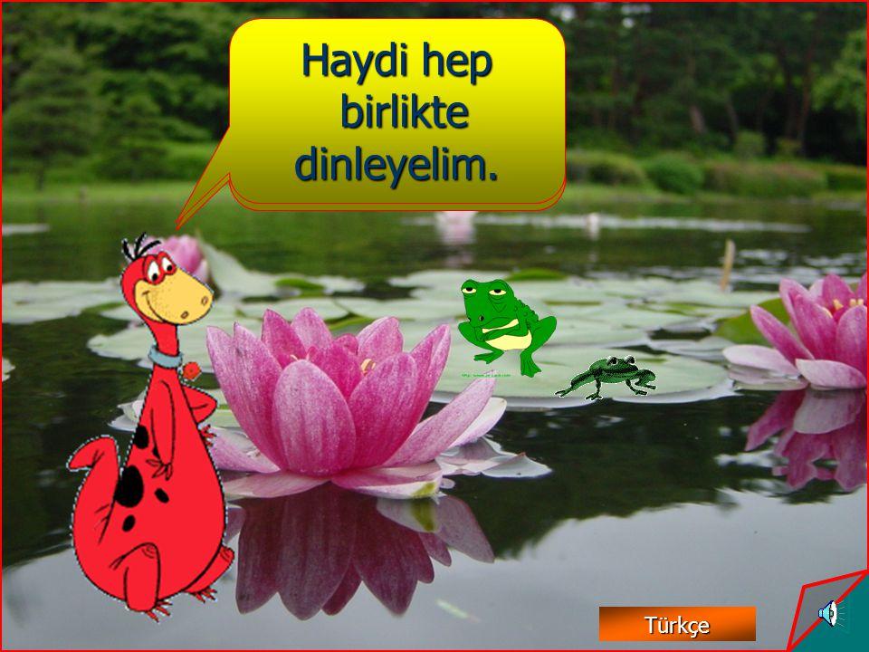 akakakak okokokok ekekekek ikikikik ukukukuk Türkçe