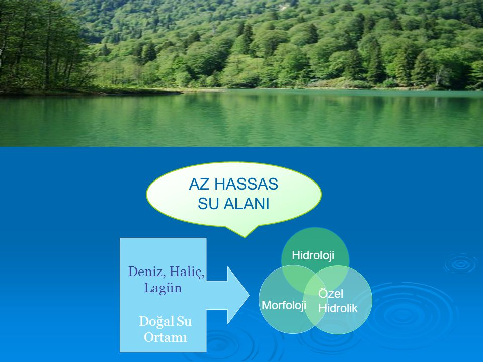 AZ HASSAS SU ALANI Morfoloji Hidroloji Özel Hidrolik Deniz, Haliç, Lagün Doğal Su Ortamı