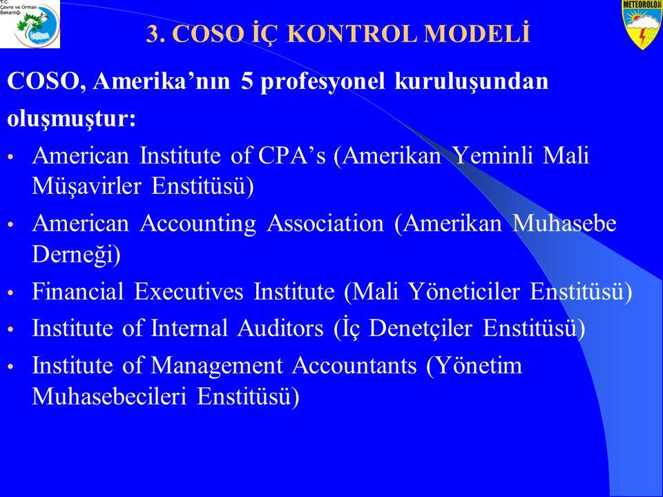 COSO, Amerika'nın 5 profesyonel kuruluşundan oluşmuştur: American Institute of CPA's (Amerikan Yeminli Mali Müşavirler Enstitüsü) American Accounting