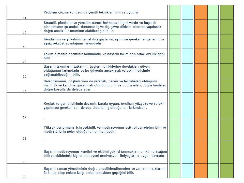 11 Problem çözme konusunda çeşitli teknikleri bilir ve uygular. 12 Stratejik planlama ve yönetim süreci hakkında bilgisi vardır ve başarılı planlamanı