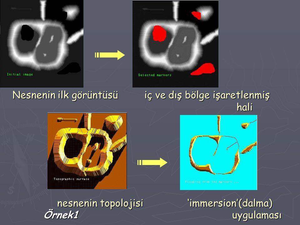 Nesnenin ilk görüntüsü iç ve dış bölge işaretlenmiş hali nesnenin topolojisi 'immersion'(dalma) Örnek1 uygulaması