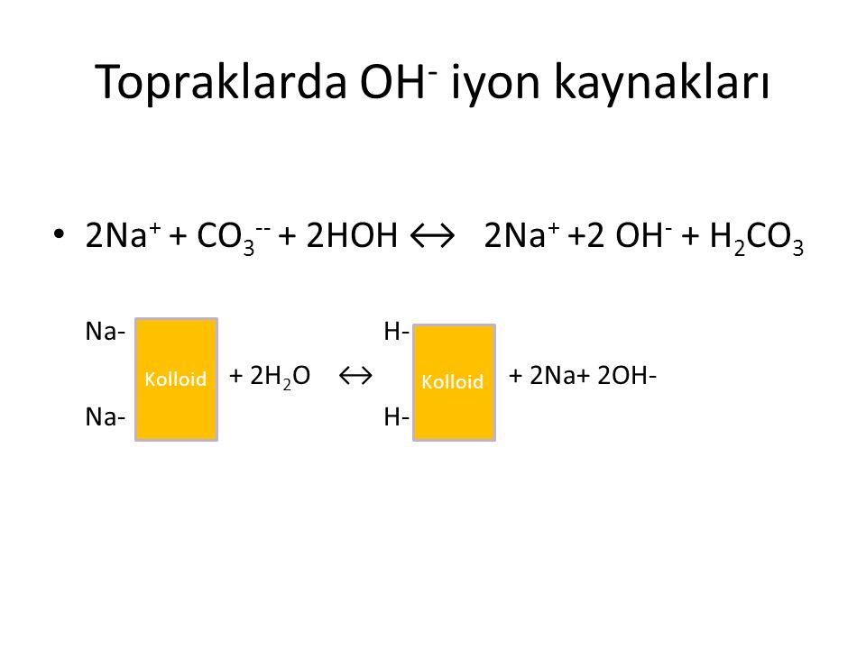 Topraklarda OH - iyon kaynakları 2Na + + CO 3 -- + 2HOH ↔ 2Na + +2 OH - + H 2 CO 3 Na- H- + 2H 2 O ↔ + 2Na+ 2OH- Na- H- Kolloid