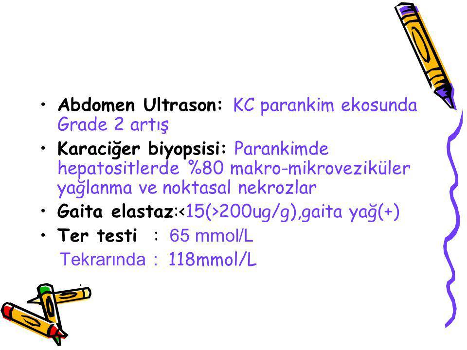 Abdomen Ultrason: KC parankim ekosunda Grade 2 artış Karaciğer biyopsisi: Parankimde hepatositlerde %80 makro-mikroveziküler yağlanma ve noktasal nekrozlar Gaita elastaz: 200ug/g),gaita yağ(+) Ter testi : 65 mmol/L Tekrarında : 118mmol/L.