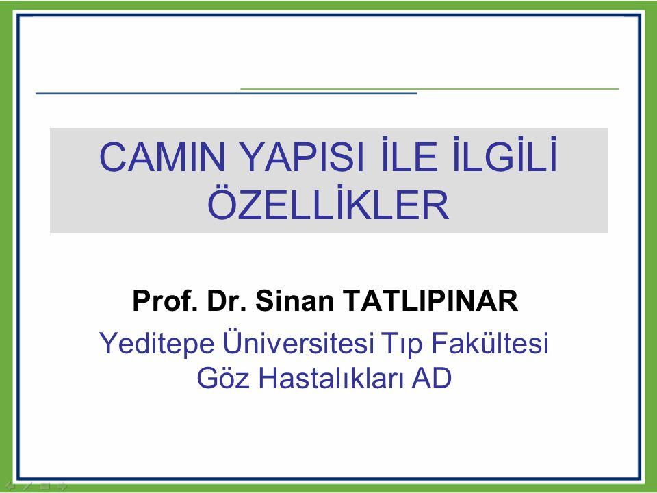 CAMIN YAPISI İLE İLGİLİ ÖZELLİKLER Prof. Dr. Sinan TATLIPINAR Yeditepe Üniversitesi Tıp Fakültesi Göz Hastalıkları AD